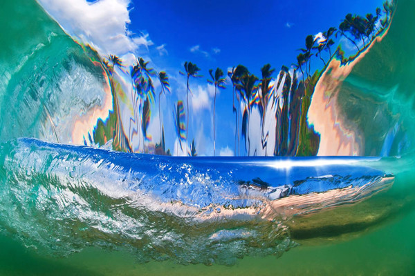 coconut_island_800_grande