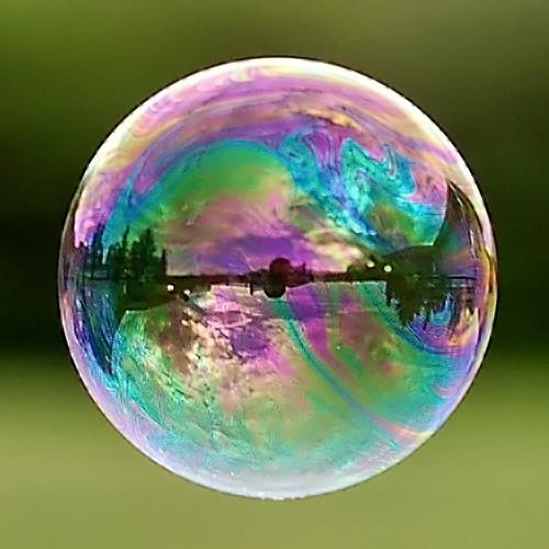 museum bubble