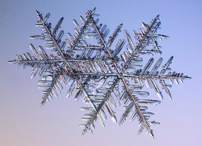 snowflake-13