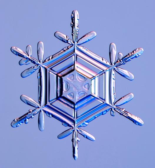 snowflakes1 (1)