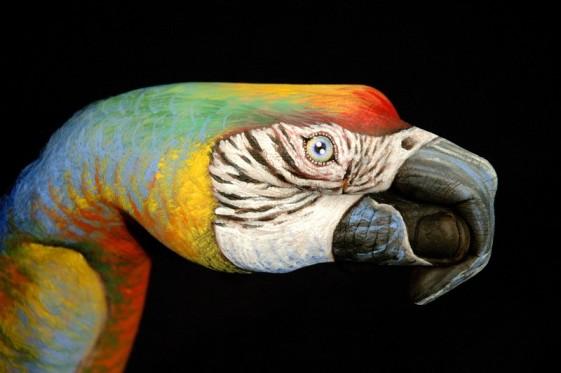 22-Parrot-un-black
