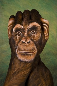 Chimpanzee1-227x340