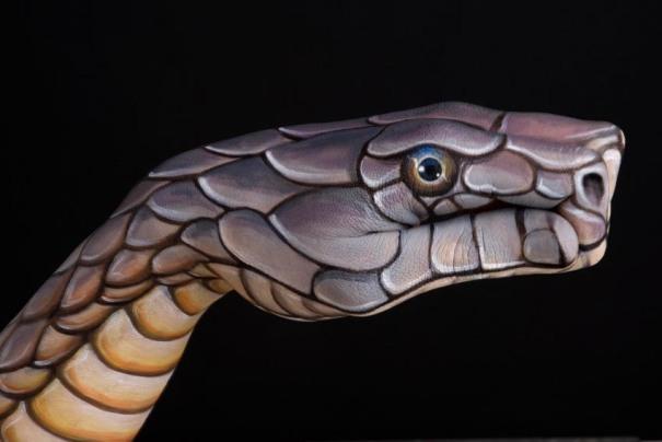 phoca_thumb_l_Cobra on black
