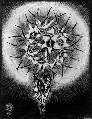 LW280-MC-Escher-Prickly-Flower-1936