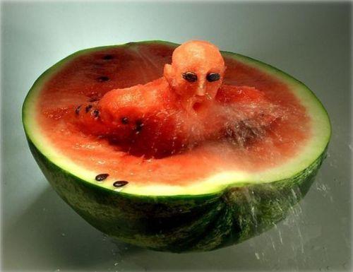 food-art06
